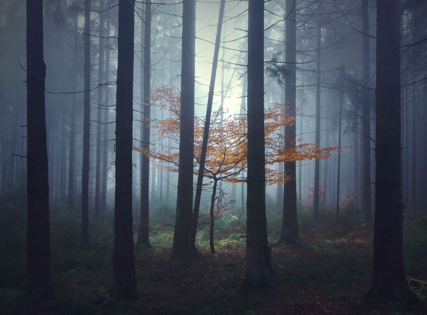 brothers-grimm-wanderings-landscape-photography-kilian-schonberger-13
