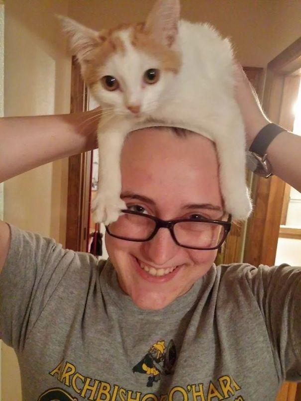 Cat Har