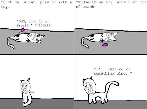 Just Cat Moments