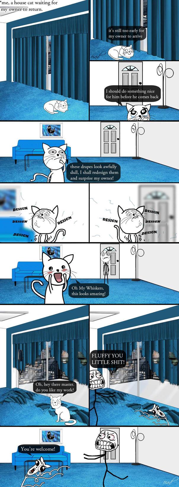 Cat Interior Design