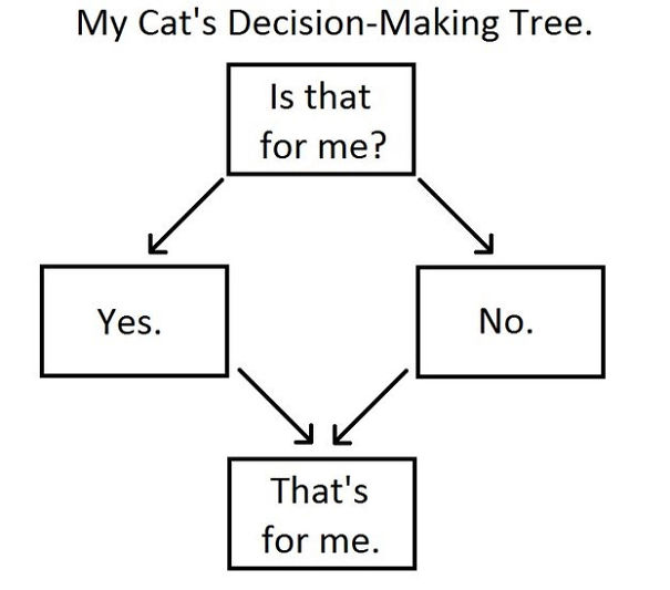 Cat's Decision-Making Tree