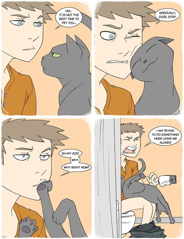 Pet Me, Human!