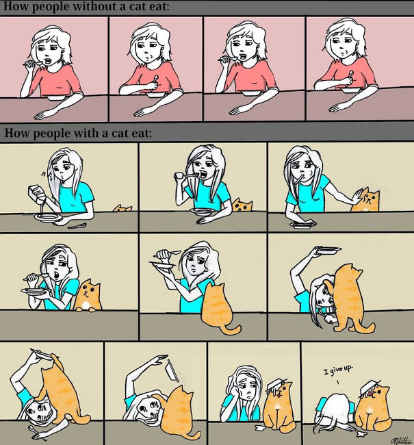 Eating With A Cat