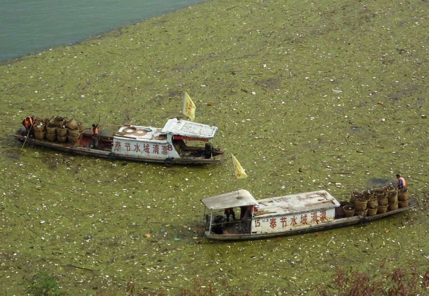 Workers Clean Up Floating Garbage On The Yangtze Rive