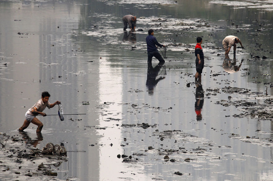Fishermen Collecting Fish In A Polluted Canal, Beijing