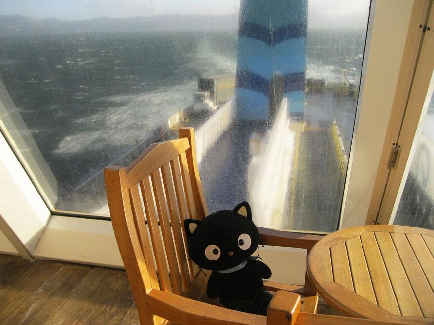 choco-cat-traveling-plush-toy-5