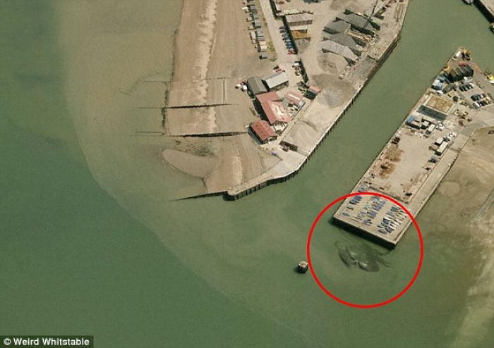 Someone Just Found The Most Terrifying Thing On Google Maps. I Have Chills All Over!