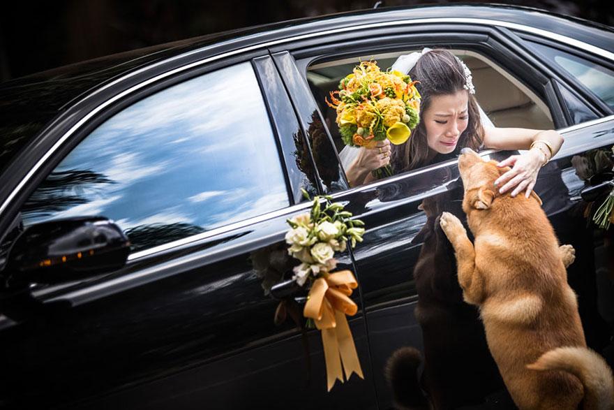 25 Of The Best Award-Winning Wedding Photos Taken In 2014