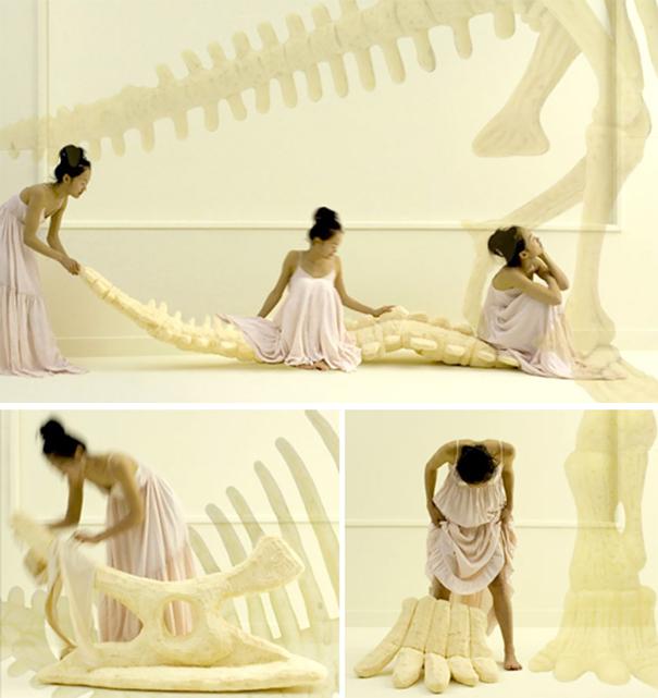 Dinosaur Bone Pillows
