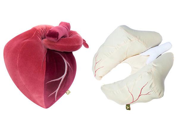 Organ Pillows