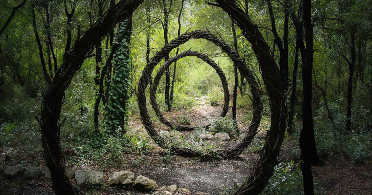 Artist Spent One Year In The Woods Creating Surreal Sculptures From Organic Materials