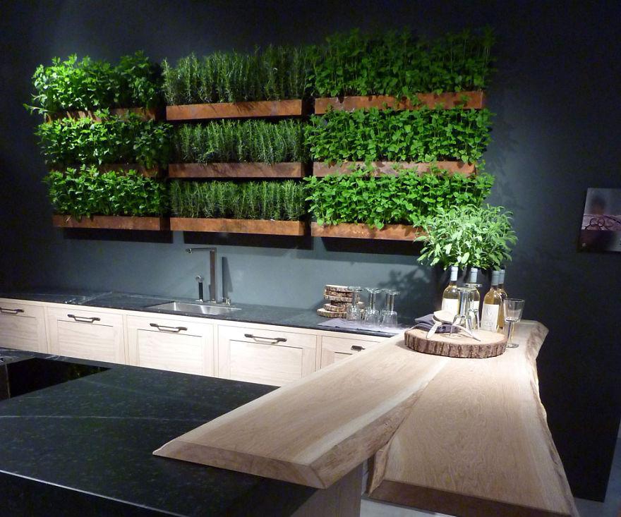 Herb Garden Kitchen Wall Bored Panda