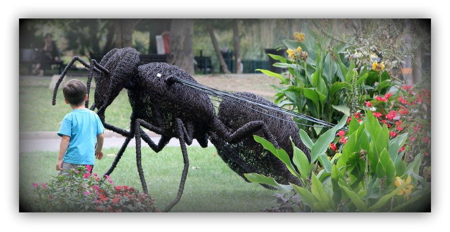 Iron Wire Bee: David Vanorbeek, 250 Cm, °2008