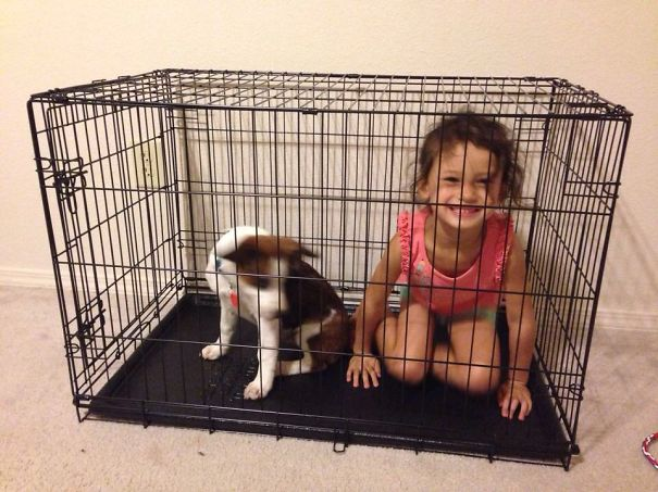 She Said The Kennel Is Their Bedroom
