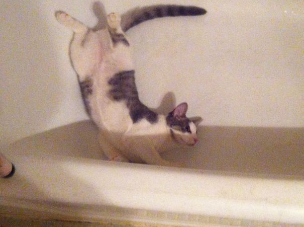 Playing Water After A Shower