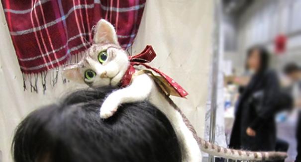 kitten-cat-hairband-accessory-campanella-2