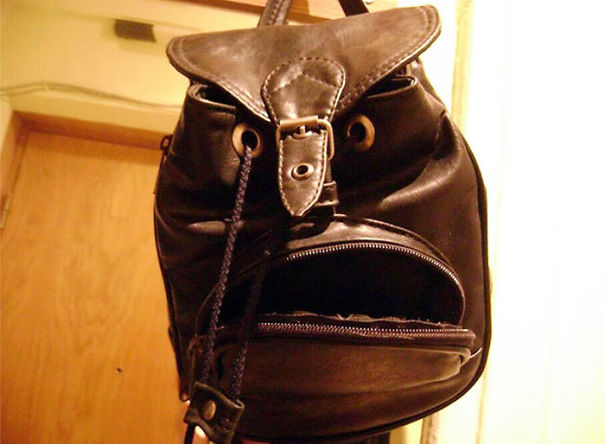 This Bag Looks Uncannily Like Phil Jones
