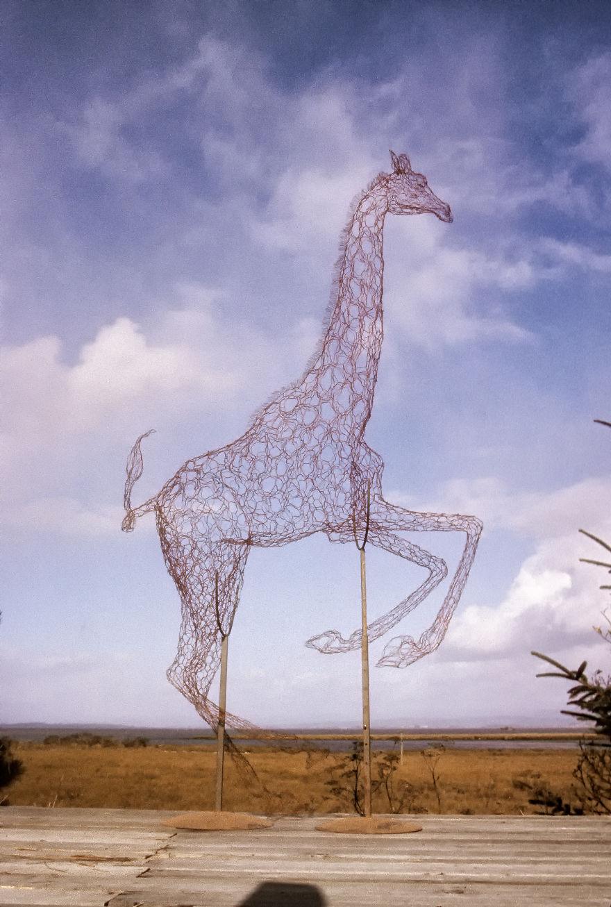 14ft Red Giraffe