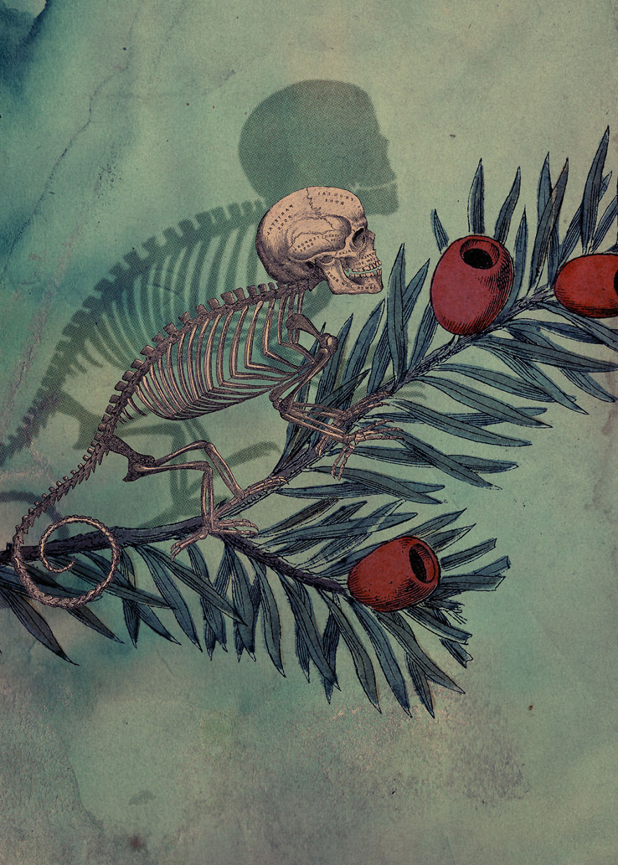 Vertigo: My Surreal Illustrations Where I Blend Reality With Imagination
