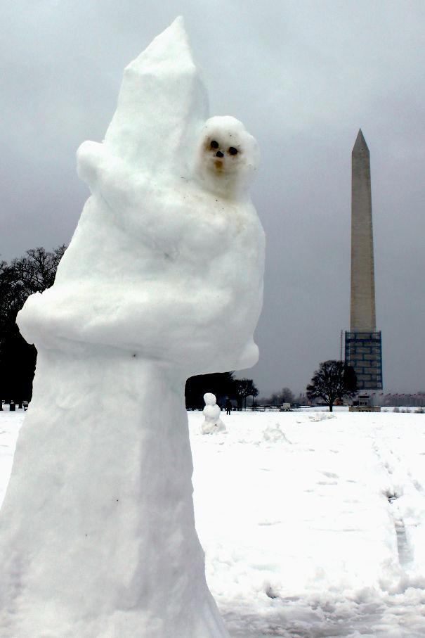Sloth On The Washington Monument