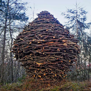 I Create Land Art That Slowly Dissolves Back Into Nature