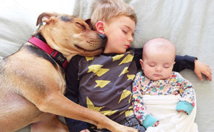 Famous Napping Boy And Puppy Duo Gets A New Nap Friend - A Baby Sister