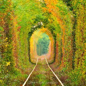 Tunnel Of Love, Romania, Caras-severin