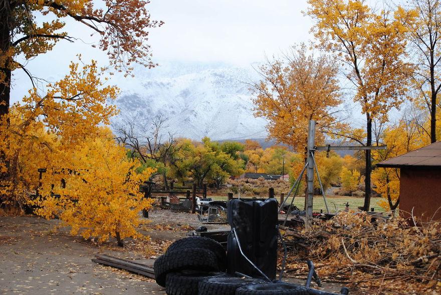 My Backyard Schurz, Nevada