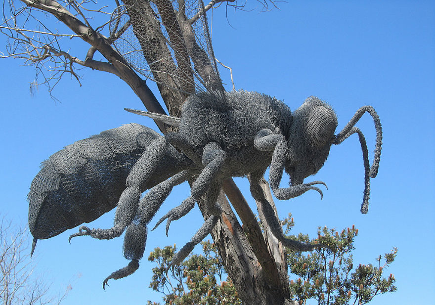 Ant Wire Sculpture