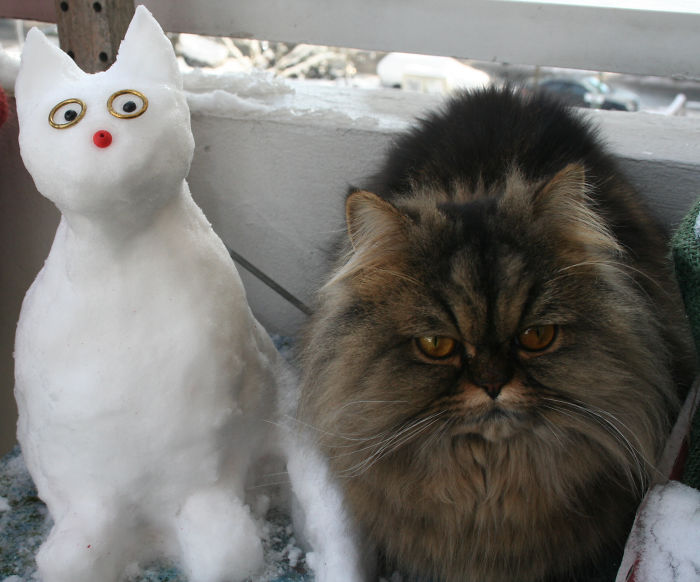 A Few Years Later His Successor Got Her Very Own Snow Pal