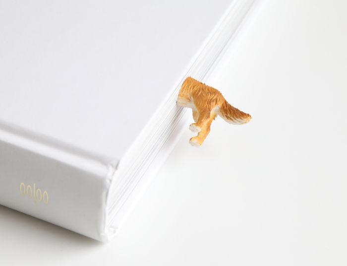 "Bookmark ""golden Retriever"""