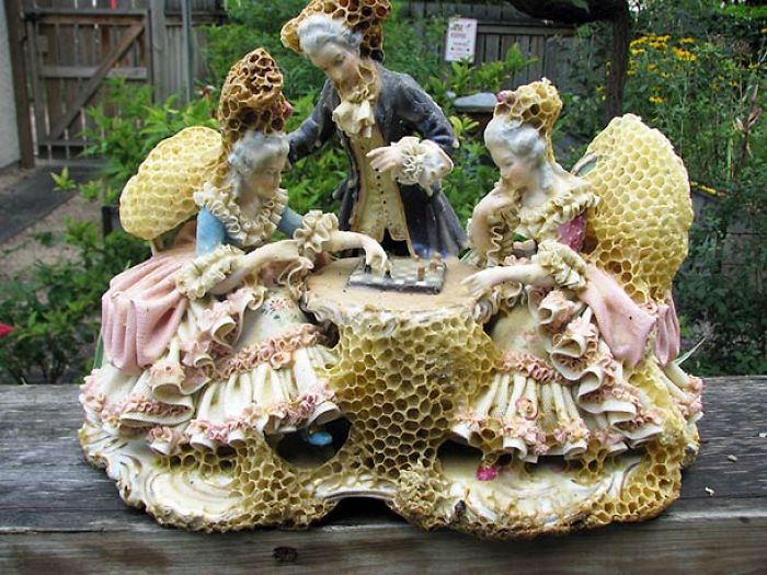 When An Artist Collaborates With Bees