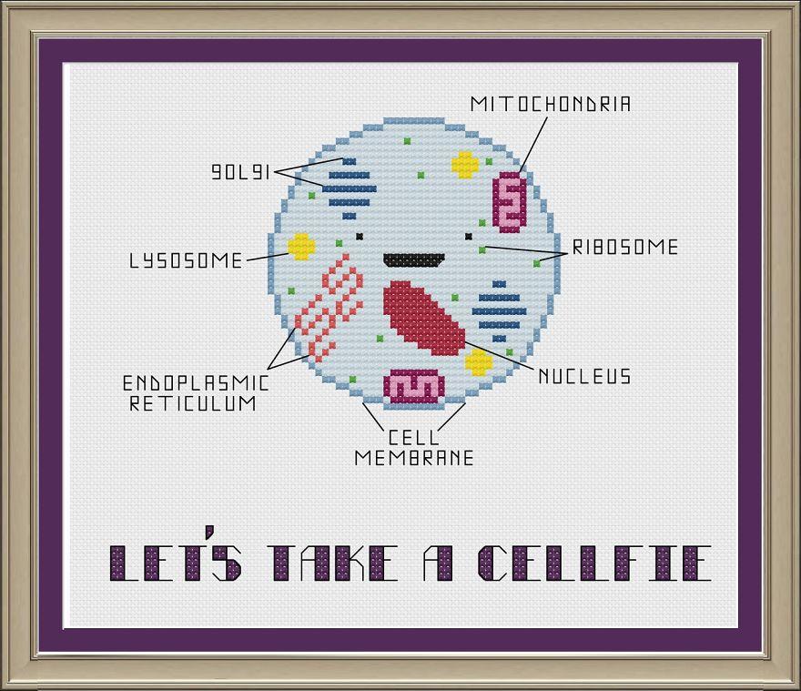 Let's Take A Cellfie