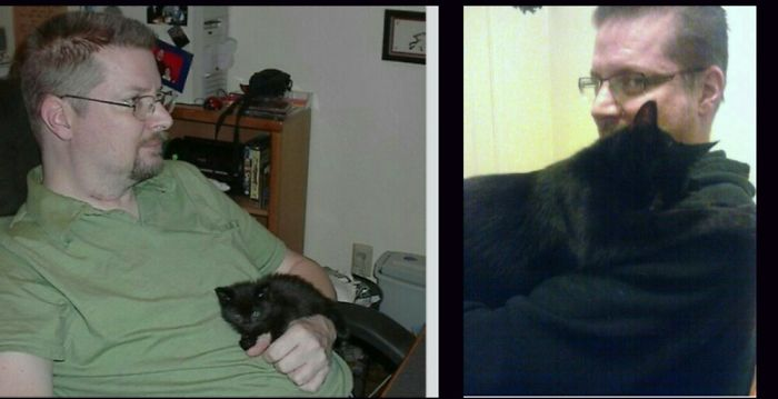 Erik And Ramses The Rescue Kitten At 12 Oz. And 7 Years Later At 7 Pounds!