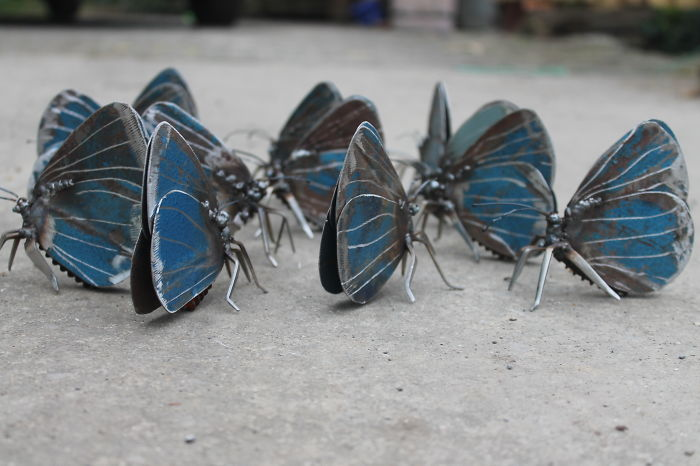 Cluster Of Scrap Metal Holly Blue Butterflies