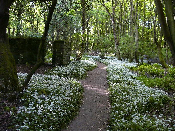 Penrhos Country Park, Holyhead