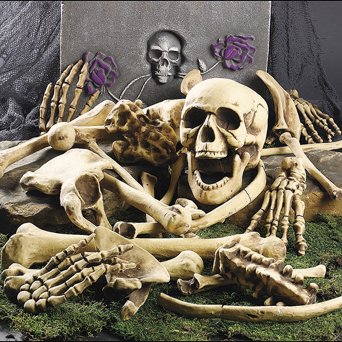 Skeleton & Skull Mania