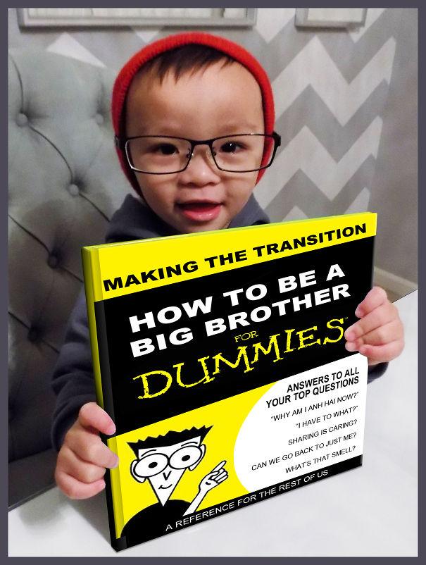 Big Bro For Dummies