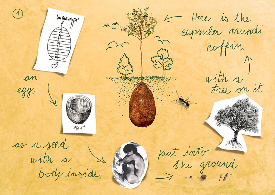 Forget Coffins Organic Burial Pods Will Turn Your Loved Ones - Capsula mundi burial pods