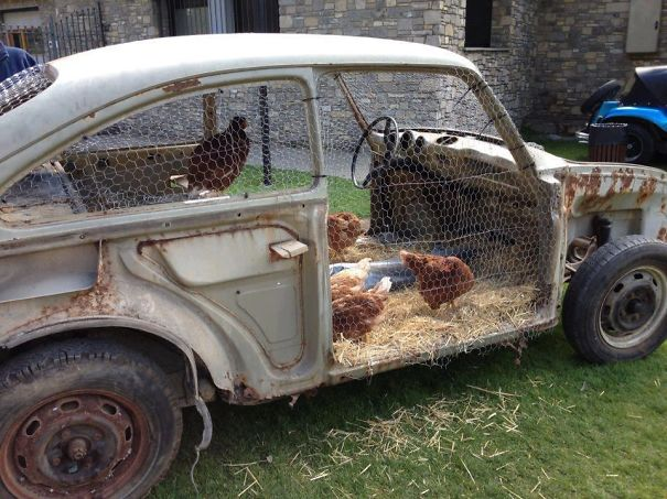 Car Turned Into A Chicken Coop