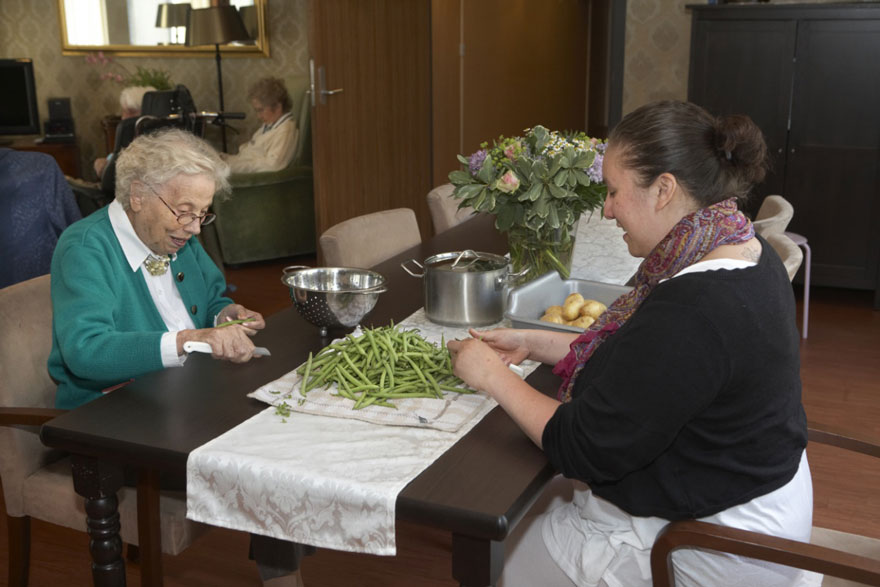 dementia-village-for-elderly-de-hogeweyk-2
