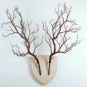 Forget Dead Animals - Bring Your Walls To Life With This Plant Wall Trophy