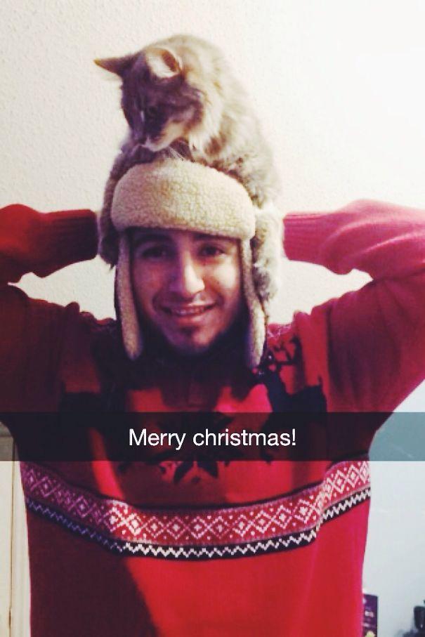 My Christmas Bae