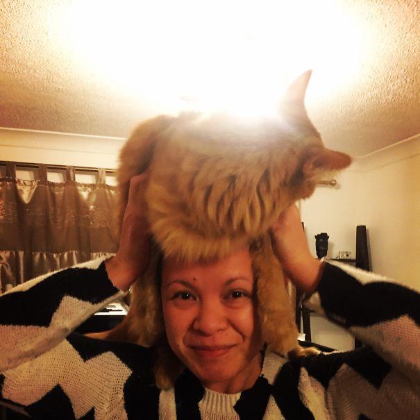 My Cat Hat