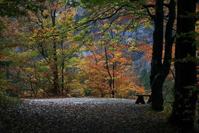 Kvacianska Dolina, Slovakia