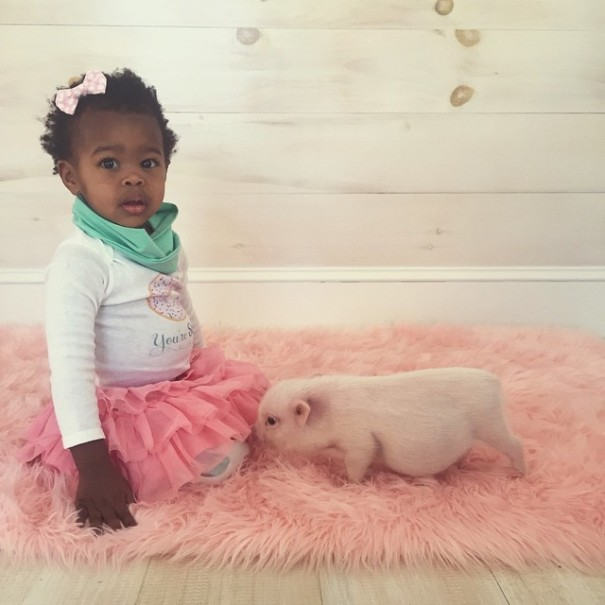 little-girl-piglet-friendship-libby-and-pearl-19