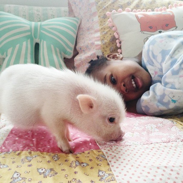 little-girl-piglet-friendship-libby-and-pearl-9