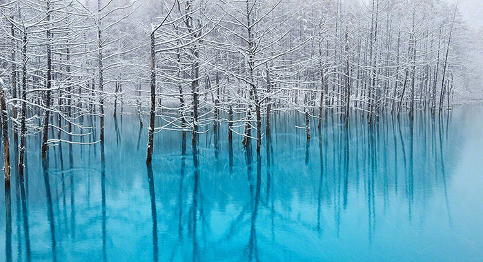 I Live In Hokkaido And Photograph This Magnificent Pond Every Season