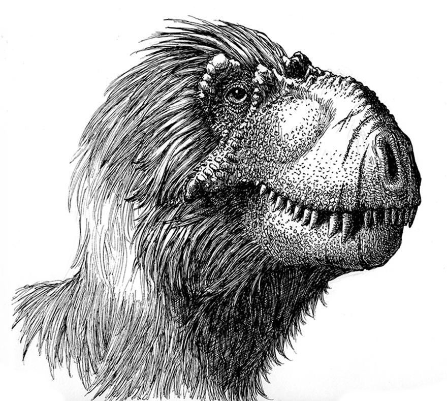 Tyrannosaur Post-bath