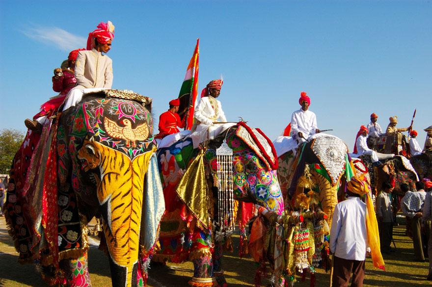 Jaipur Elephant Festival (India)